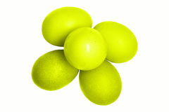 Oeufs verts Image stock