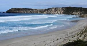 Oever bij Kaap Willoughby, Kangoeroeeiland, Australi? 4K stock videobeelden