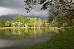 Oever van het meer Royalty-vrije Stock Foto's