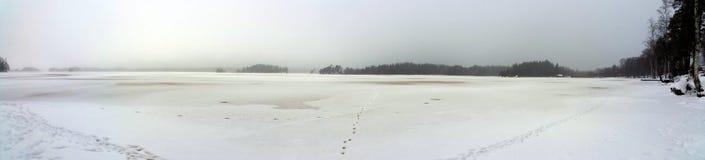 Oever van het meer in de Winter Stock Foto