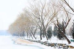 Oever van het meer van de Zomerpaleis van Peking in de winter stock fotografie