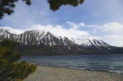 Oever van het meer in Yukon royalty-vrije stock afbeelding