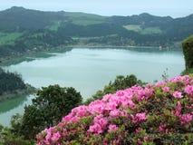 Oever van het meerlandschap bij lagoa das sete cidades Royalty-vrije Stock Afbeelding