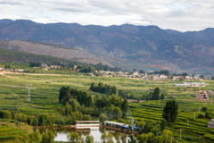 Oever van het meerstad van Dali Yunnan China Stock Foto's