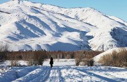 Oezbekistan, Chimgan-gebied, de lente van 2006 Royalty-vrije Stock Foto