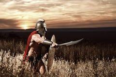 Oförskräckt ung spartansk krigare som poserar i fältet arkivbild