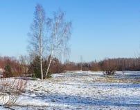 Ofdunes de la visión en invierno Imágenes de archivo libres de regalías