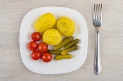 Ofenkartoffeln mit in Essig eingelegten Tomaten, Essiggurken in der Platte und Gabel Lizenzfreie Stockfotografie
