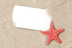 Oferta especial de las vacaciones Imagen de archivo libre de regalías