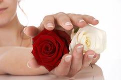 oferta róży Fotografia Stock