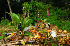 Ofertas havaianas Fotografia de Stock Royalty Free
