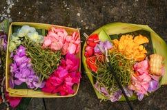 Ofertas tradicionais do balinese Imagens de Stock Royalty Free