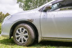 Off the beaten track: rental car splashed with mud after road tr stock photography