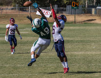 Off the Fingertips. American football players in a game on Saturday afternoon in Redding, California. Shasta College green vs. Gavilan College stock images