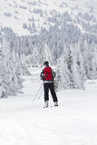 Off piste skiing Stock Photography