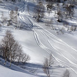 Off-piste slope with track from ski and snowboard in sun day Royalty Free Stock Images