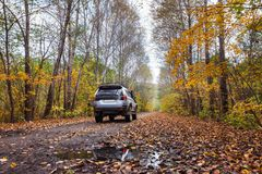 Off road car on dirt road in autumn forest Stock Image