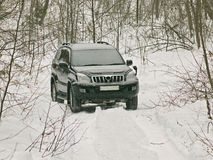The off-road car in winter wood Royalty Free Stock Image
