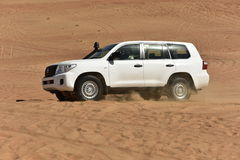 Off Road Driving in the Wahiba Desert Royalty Free Stock Photo