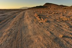 Free Off Road Golden Morning Mojave Desert Landscape Royalty Free Stock Images - 105671429