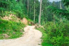 Off Road in Himalayagebergte, het Grote Nationale Park van Himalayan, Sainj-Vallei, Himachal Pradesh, India stock afbeelding