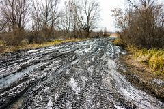 Off-road Track In Autumn Forest Stock Photography