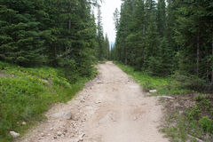 Off Road Trail in the Rocky Mountains Stock Photo