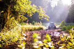 Off road truck in trial competition. Pickup 4x4 truck driving trough mudy track defocused, focus on mud and branches in front Stock Photo