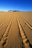 Off road vehicle tracks at Coral Pink Sand Dunes State Reserve in southern UT Royalty Free Stock Photo