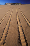 Off Road Vehicle Tracks in Sand, Coral Pink Sand Dunes State Park, Utah Royalty Free Stock Image