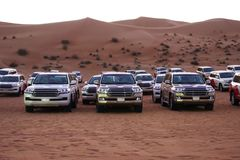 Off road vehicles prepared for safari in the desert, parked in row, extreme sport or adventure royalty free stock images