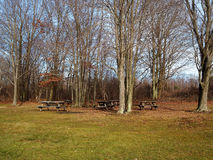Off-Season Picnic Area in the Trees Stock Image
