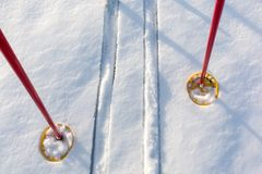 Off-track skis and ski poles on snow Stock Photography