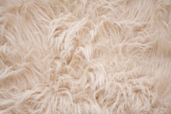 Off-white or cream-colored furry background Royalty Free Stock Images