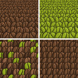 Ð¡offee beans. Vector illustration on the theme of coffee beans background royalty free illustration