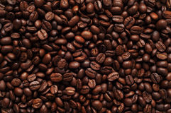 Сoffee. A drink made from the roasted and ground beanlike seeds of a tropical shrub, served hot or iced Stock Photography