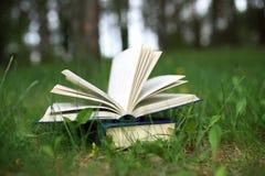Offene Bücher im Freien Bücher im Wald lizenzfreies stockbild
