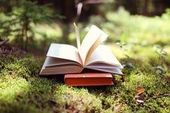 Offene Bücher im Freien Wissen ist Leistung Buchen Sie in einem Waldbuch auf einem Stumpf lizenzfreie stockfotografie