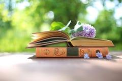 Offene Bücher im Freien Wissen ist Leistung Buchen Sie in einem Waldbuch auf einem Stumpf stockbilder