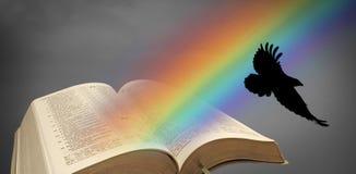Offene Bibel des Noah-Regenbogenraben stock abbildung