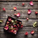 Offene Geschenkbox des Rosen-Blumenblattinneres Stockfotografie