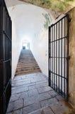 Offene Tür heraus vom Keller Stockbild