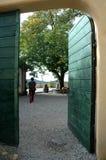 Offene Tür mit Baum Stockfotografie