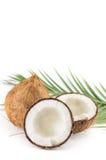 Offene und ganze Kokosnüsse und Palmblätter Lizenzfreies Stockfoto