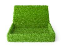 Offener Kasten bedeckte ein grünes Gras stockbild