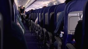Offener Schuss zwischen Sitzen von den Passagieren, die innerhalb des Flugzeuges beim Reisen sitzen stock footage