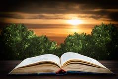 Offenes Buch auf dem Hintergrund des nächtlichen Himmels lizenzfreie stockfotos