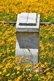 Offenes Buch auf einem Gebiet von Blumen im Oleander-Kirchhof in Galveston TX lizenzfreie stockfotografie