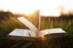 Offenes Buch auf Gras unter der Sonne Lizenzfreie Stockbilder