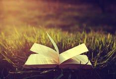 Offenes Buch auf Gras unter der Sonne in den Weinlesefarben Lizenzfreie Stockfotos